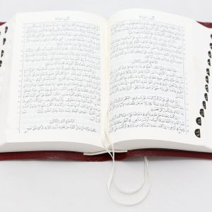 Arabic Bible 35TI Imm. Leather index-0