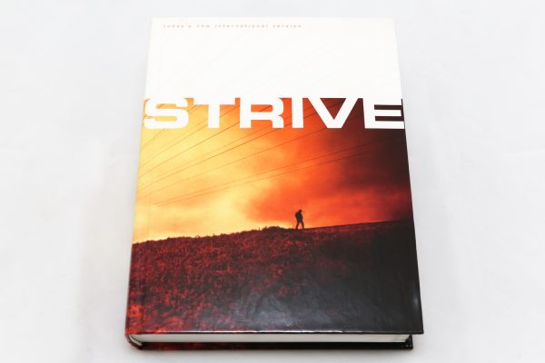 TNIV Strive Bible For Men HC-0