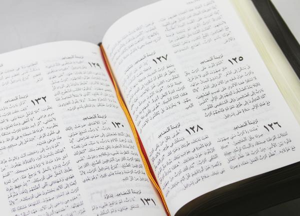 Arabic New Van Dyke Bible NVD67Z-1382