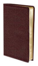 Thinline Bible Compact NIV Burgundy-0