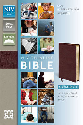 Thinline Bible Compact NIV Burgundy-620