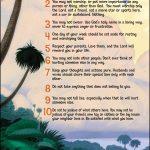 NIV Adventure Bible Full color -1161