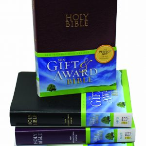 NIV Gift & Award Bible Burgundy-0