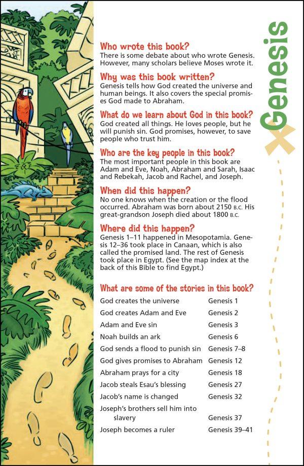 NIV Adventure Bible Full color -1162