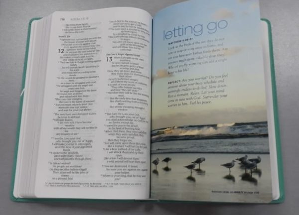 renew bible 2