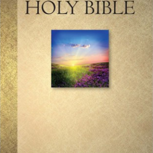 Holy Bible (New International Version)-0