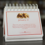 Whiskers & Paws calendar-889