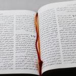 Arabic Bible NVD65z-1373