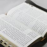 Arabic NVD Bible nvd65zti -1376