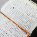 Arabic Bible NVD67ZTI-1385