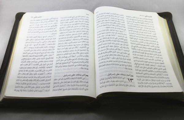 Arabic Bible NVD95Z-1396