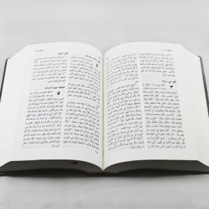 Open arabic bible nvd42