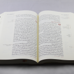Arabic Bible NVDCR053ATI open