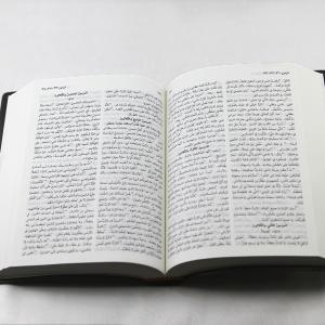 new van dyck bible nvd12 open
