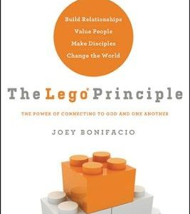 THE LEGO PRINCIPLE-0
