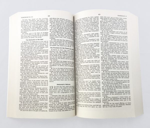 Holy Bible, King James Version-5627
