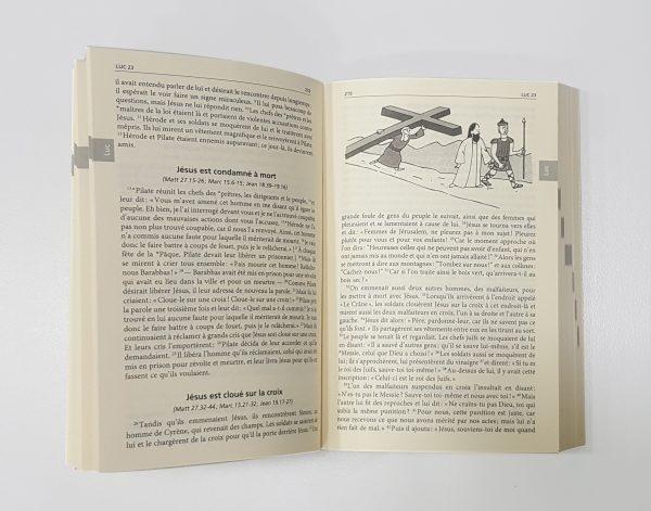 Le Nouveau Testament Illustré-5698