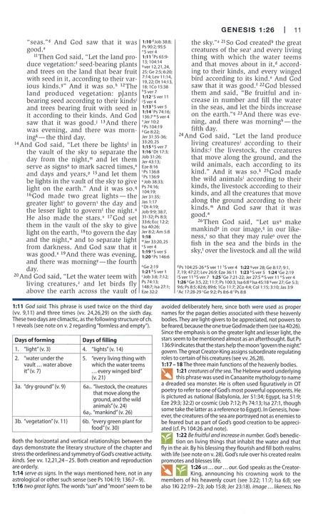 NIV STUDY BIBLE PERSONAL SIZE TAN BLUE-5799