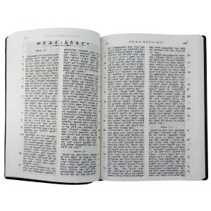 Amharic Bible RO52PL-5795